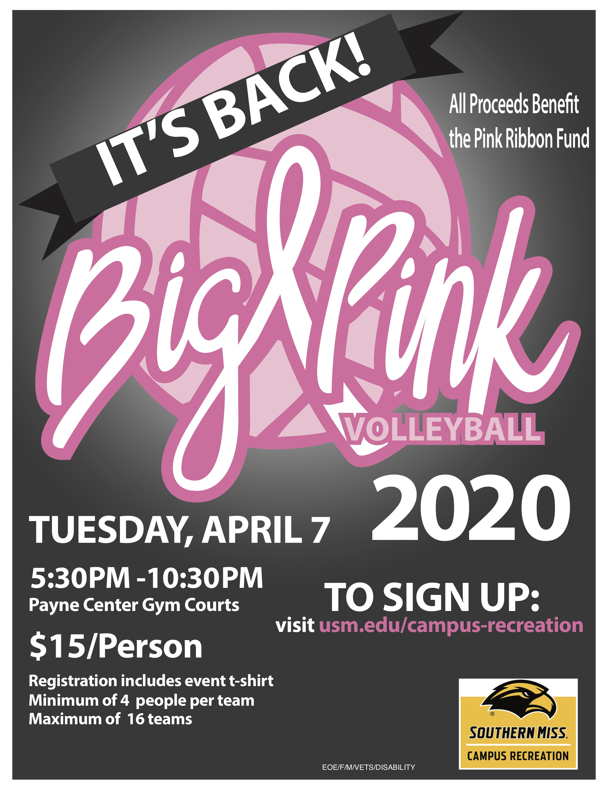 Big Pink Volleyball Flyer