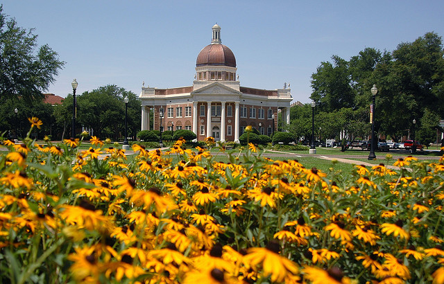 Black-eyed Susans in front of the Aubrey K. Lucas Administration Building
