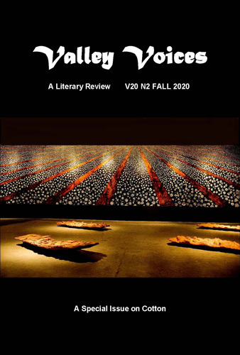 Valley Voices cover image