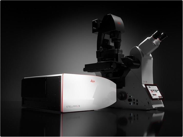 STELLARIS STED super resolution microscope