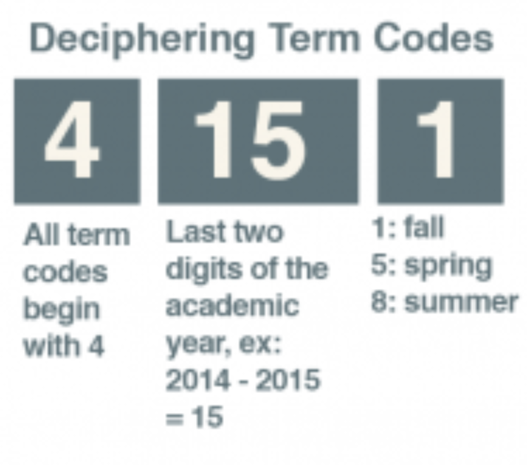 Deciphering Term Codes