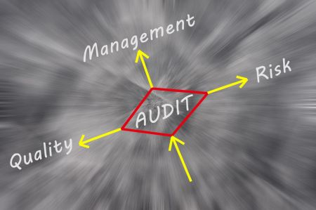 graphic showing the relationship between the audit and quality, management and risk