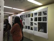 Senior Show in Painting, Drawing, and Sculpture Spring 2015