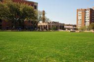 Centennial Lawn