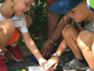 Students in the Day Program search for bugs during an Insect-fari.