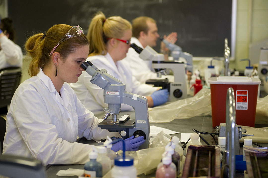 Medical Laboratory Science | Undergraduate Programs | The