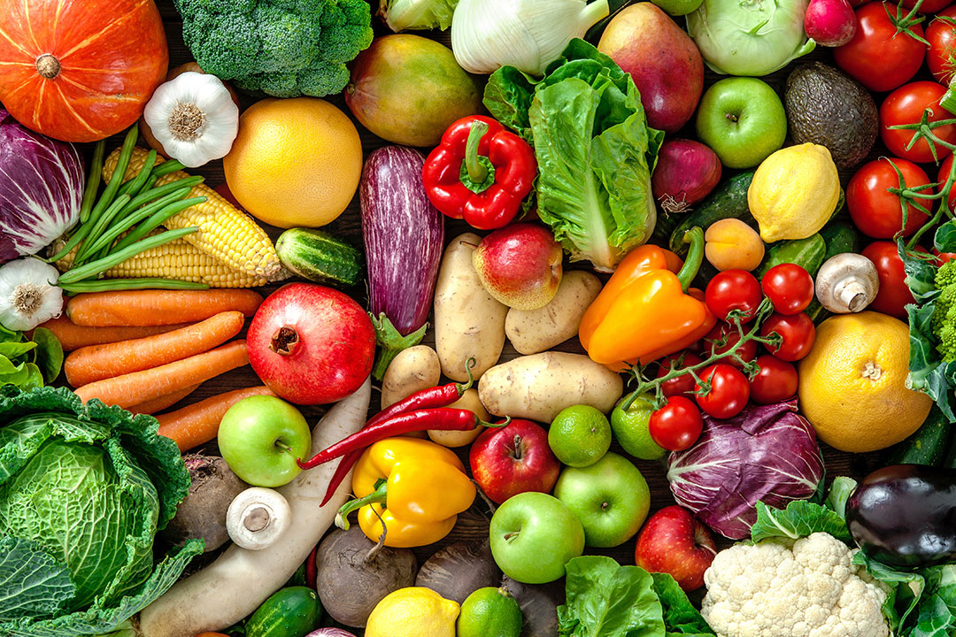 Nutrition and Dietetics   Undergraduate Programs   The